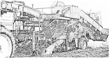 Причіпний картоплезбиральний комбайн Lockwood